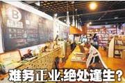 青岛民营书店转型之路:难务正业,绝处逢生?