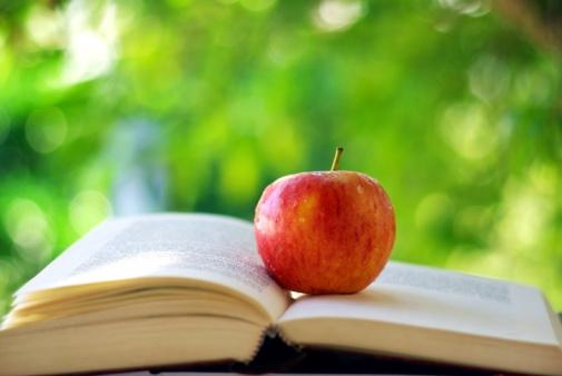 苹果电子书价格操纵案综述之一:苹果垄断之罪如何成立?