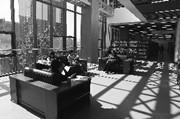 """在图书馆""""上班""""成年轻一族新风尚"""