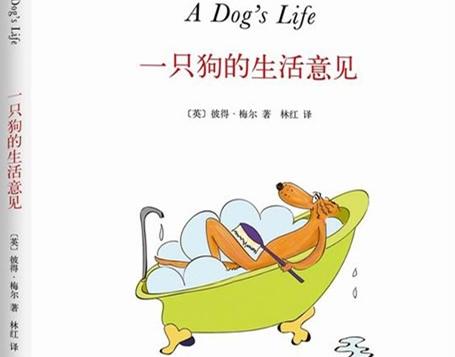 《一只狗的生活意见》:一本特立独行的书,呈现全方位的普罗旺斯