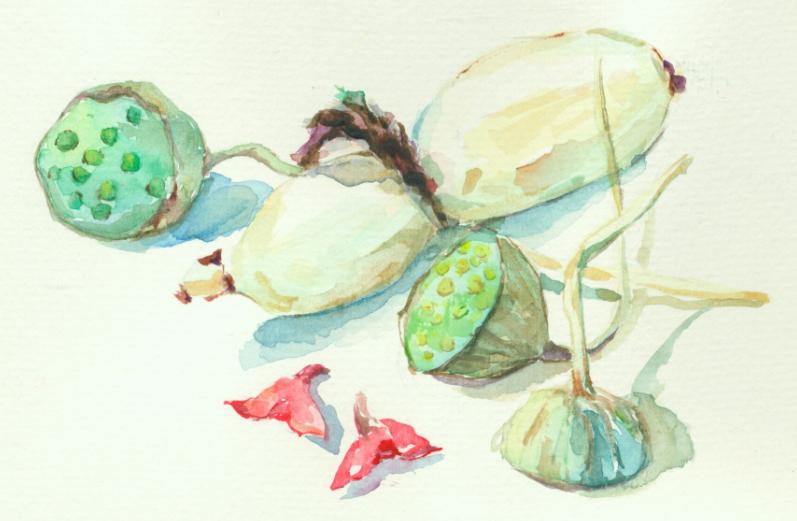 谈书 | 一本美食小文忆起老中国的简净