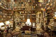 世界那么大,如果你爱书,何不去看看……
