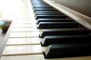 鲁成文:在古典音乐中成就诗歌