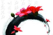 【端午节诗歌专题书单】中华好诗词的教育——古典诗词读物推荐