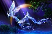 【端午节诗歌专题书单】凤凰在烈火中歌唱——中外现代诗歌欣赏