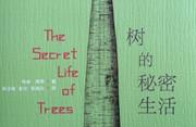 八年之恋:我们与树的不解之缘——《树的秘密生活》背后的故事