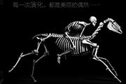 骨骼与演化,脊椎动物演化与古生物学家的日常——《演化》新书分享会
