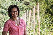 美国第一夫人作品《美国式种植》——分享绿色健康生活理念