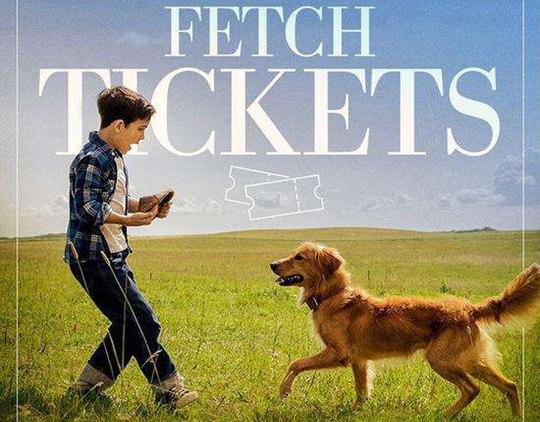 《一条狗的使命》上映,原版小说《在轮回中找你》即将再版