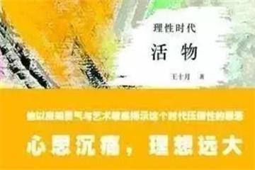 """完稿12年后出版,鲁迅文学奖获得者王十月称""""这部书注定是我的传奇"""""""