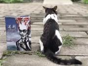 《达利》:法国当代漫画大师埃德蒙·波顿以画笔描绘超现实主义画家的传奇一生