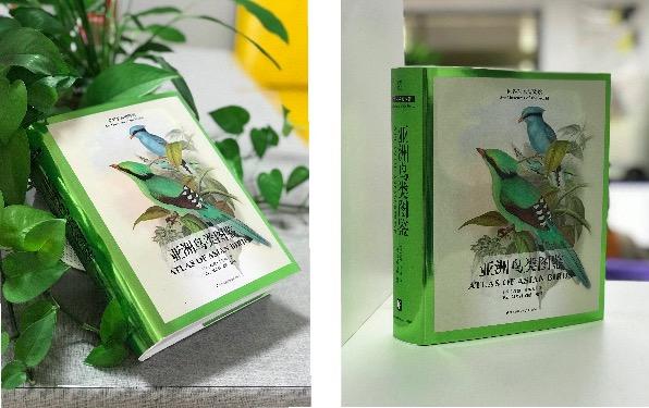 """《亚洲鸟类图鉴》:一座""""纸上鸟类图书馆"""""""