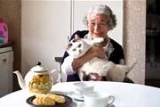 英国儿童文学大师朱迪斯·克尔离世!《老虎来喝下午茶》陪伴三代人成长,总销量超过1000万册