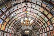 新店精选:6月,全国新开书店又有哪些新看点?
