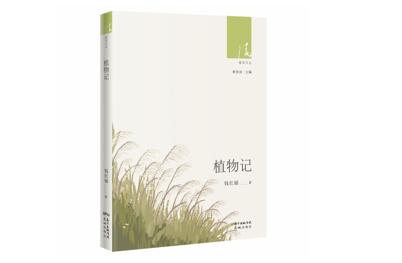 《植物记》:从春天书写到冬日,赏念自然轮回
