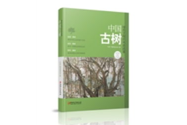 传递生物密码,追溯千年中国史