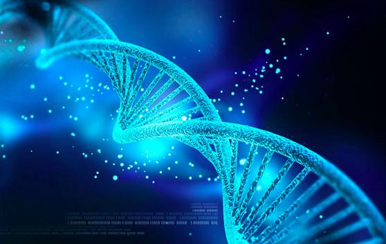 对话《进化》作者何涛:科幻的意义在于对未知的思考