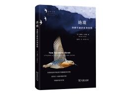 如何做到每年飞行上万公里?记录候鸟红腹滨鹬的史诗旅程