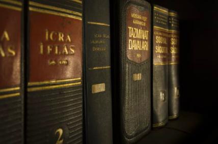 普及法律知识,《民法典普法连环画系列》丛书正式推出