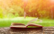 2016年英语市场最好的十部有声书