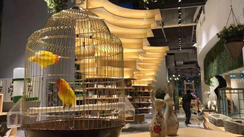 """2019中国书店大会·年度主题书店:在有限的空间里完成""""主题展示"""""""
